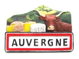 Magnet Auvergne en résine